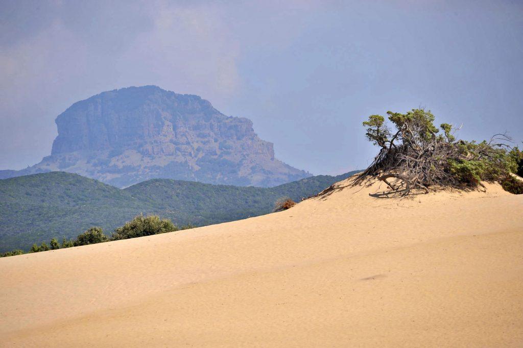 Le dune di sabbia di Piscinas sono tra le più alte d'Europa